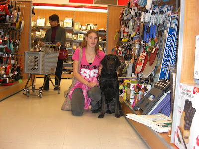 Picture of Rudy in a sit-stay with me kneeling beside him - inside TJ Maxx. There's a person shopping behind us; but Rudy's paying attention to the camera