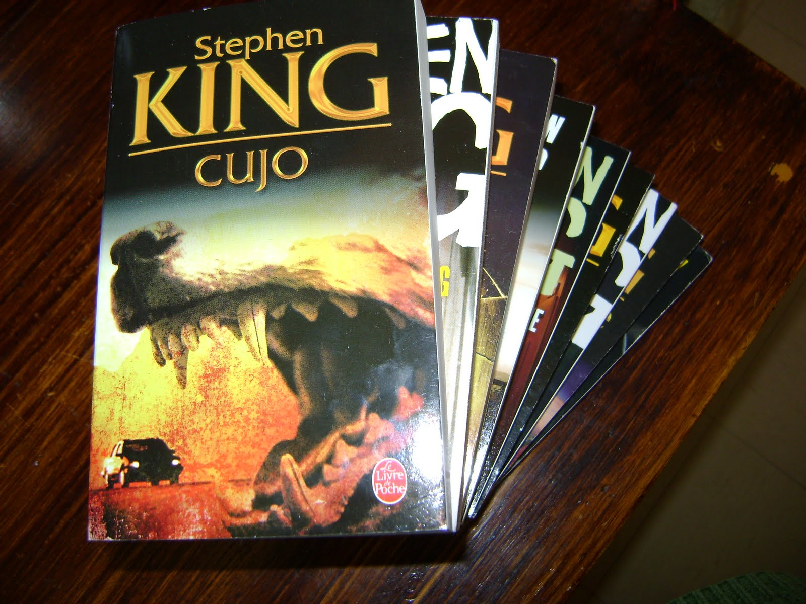 an analysis of the book cujo by stephen king Pulling a story directly out of my own nightmares, stephen king's cujo is a story about a well mannered st bernard that gets bitten by a rabies positive bat and becomes rabid himself, then terrorizes the small town of castle rock, maine.