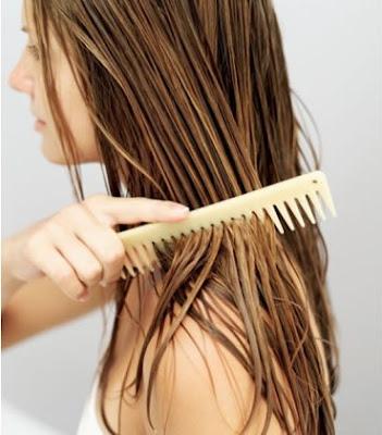 10 Nutrisi Terbaik Bagi Rambut