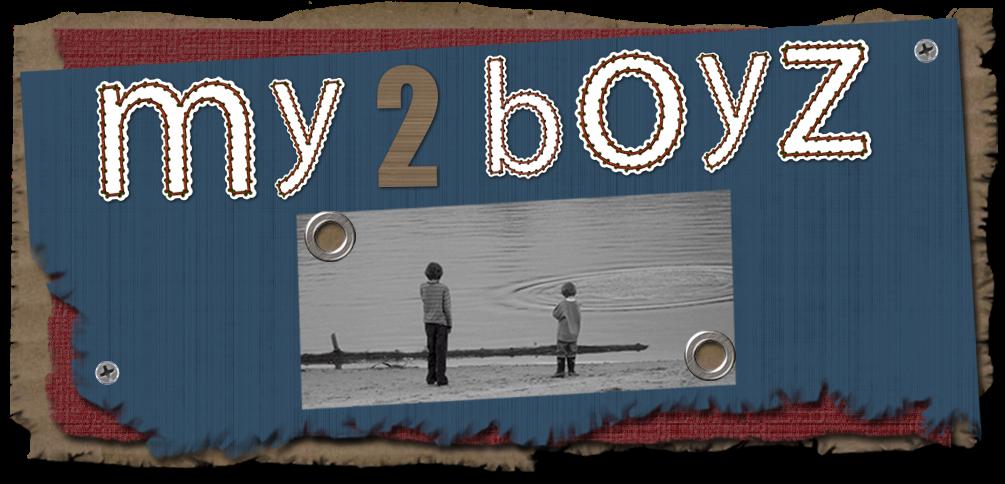 My 2 Boyz