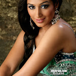 Padamapriya Talented South Indian Actress