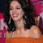 Hot Mallika Sherawat Pics Collection