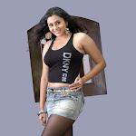 Sexy Kannada Actress Namitha
