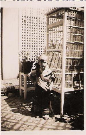 Niño junto a la pajarera.