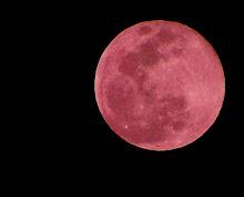 Luna Roja Sobre el Mar Negro.