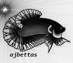 ajbettas