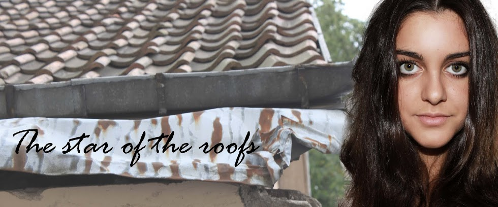 The star of the roofs