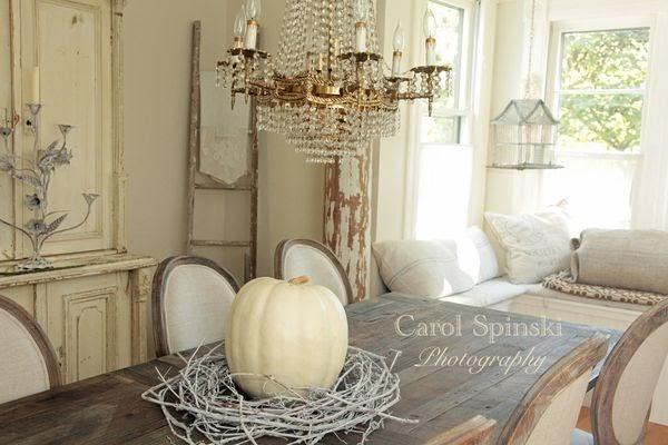 photographer carol spinski uses these beautiful lumina pumpkins above