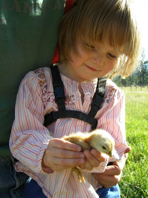 Anna holding one of her chicks