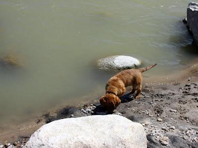 Tucker Crossing on May 2