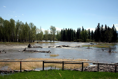 Bitterroot River south of Victor Crossing