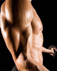 Treino para crescimento de braço
