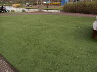 Plastic lawn