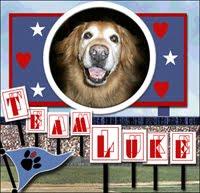 Go Team Luke!