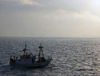 Pesquero de Algeciras