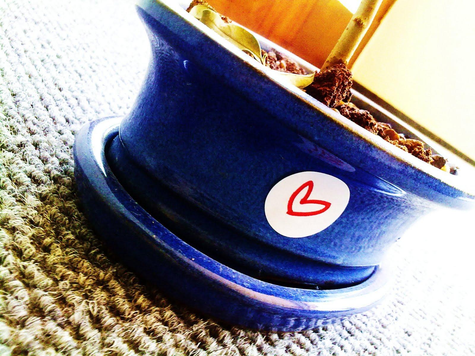 [bonsai+revolutionary!.jpg]