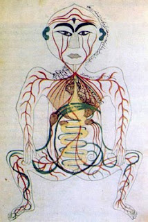 Diagram of Digestive System (blogspot.com)