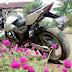 Modifikasi Kawasaki Bajaj Pulsar 2014
