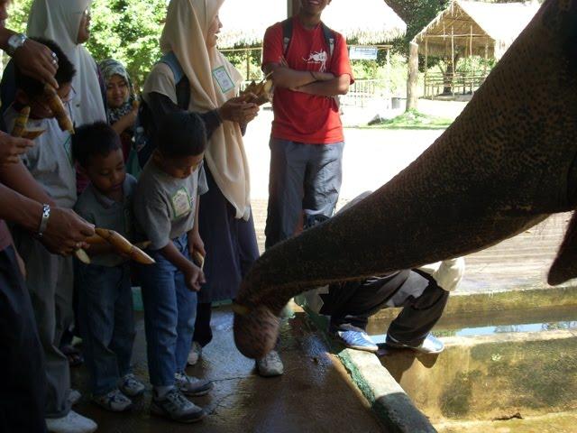 Permainan Tapak Gajah