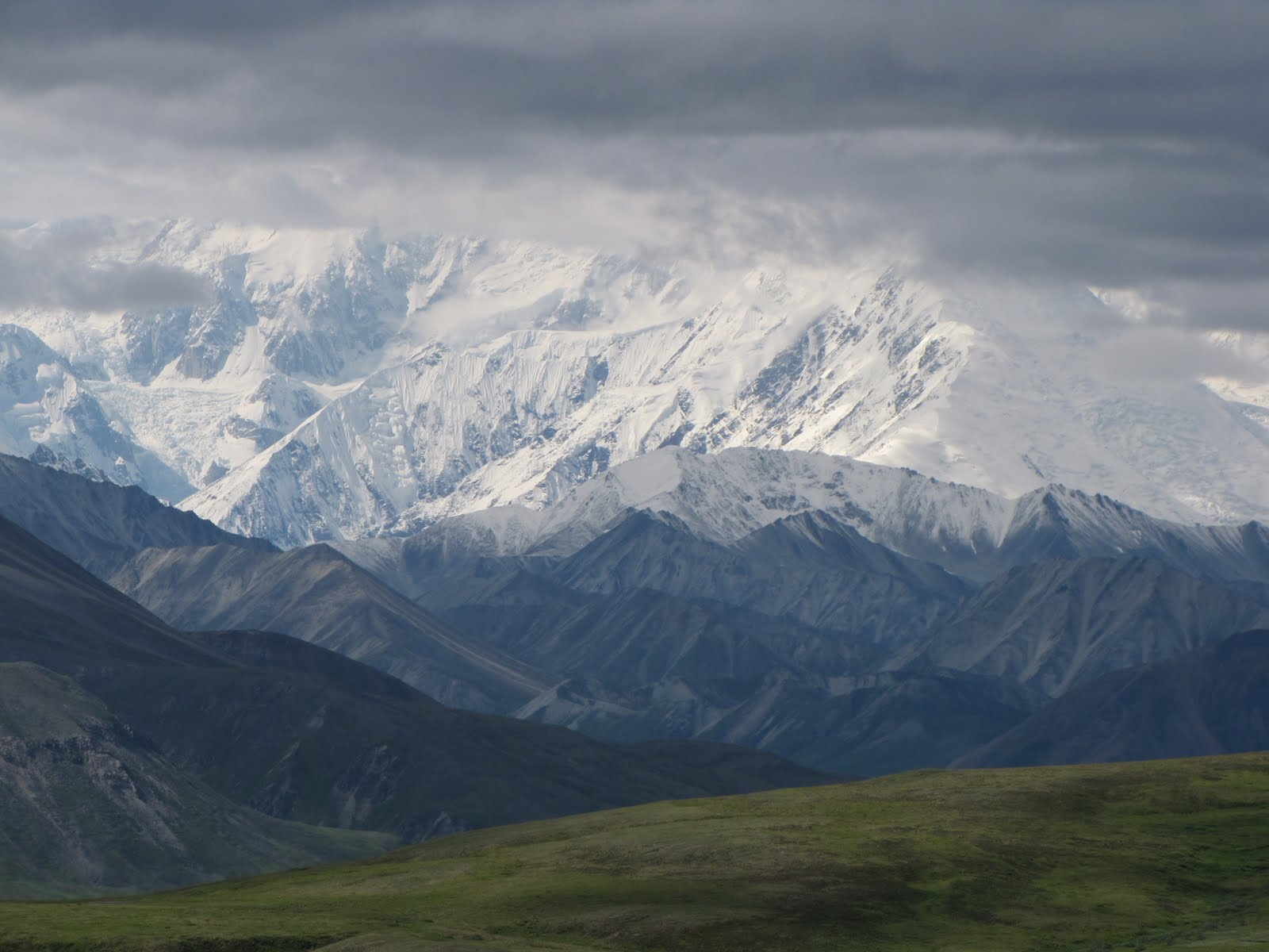 denali national park christian singles Alaskacruisescom also features alaska  journey through the scenic wilderness that is denali national park & finally experience alaska from one of princess .