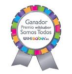 2ª finalista Premio Wikisaber somos todos 2010