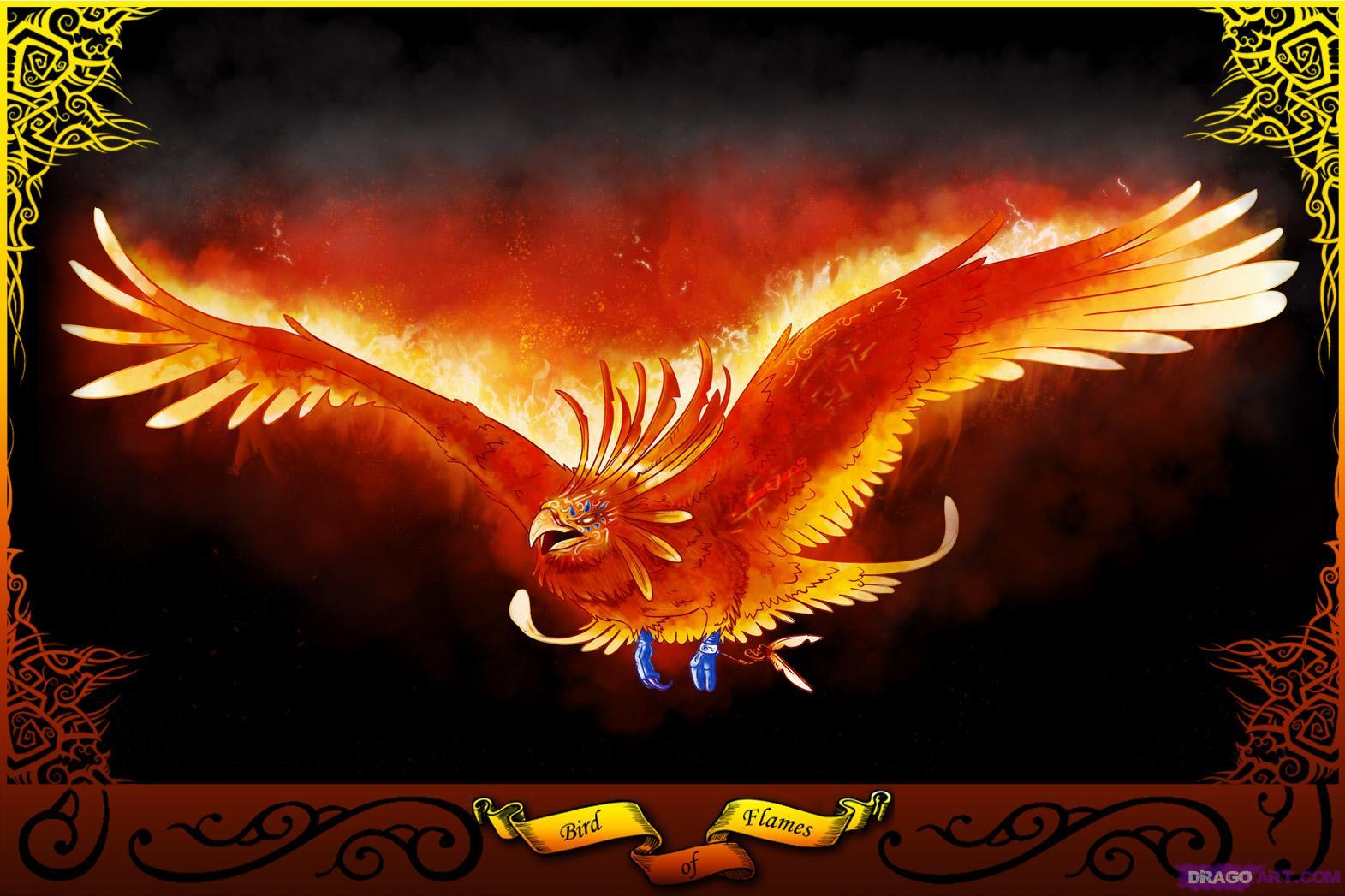 The phoenix bird technology focus the phoenix bird voltagebd Gallery
