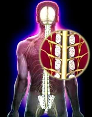 can garlic help gout high uric acid back pain does uric acid cause joint pain