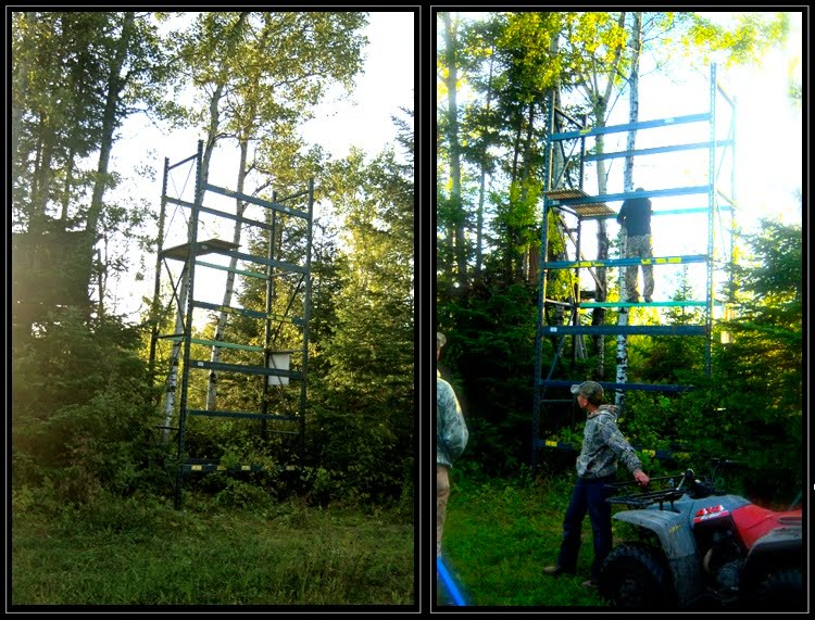 Fun Friday Pallet Rack Deer Stands Ak Material