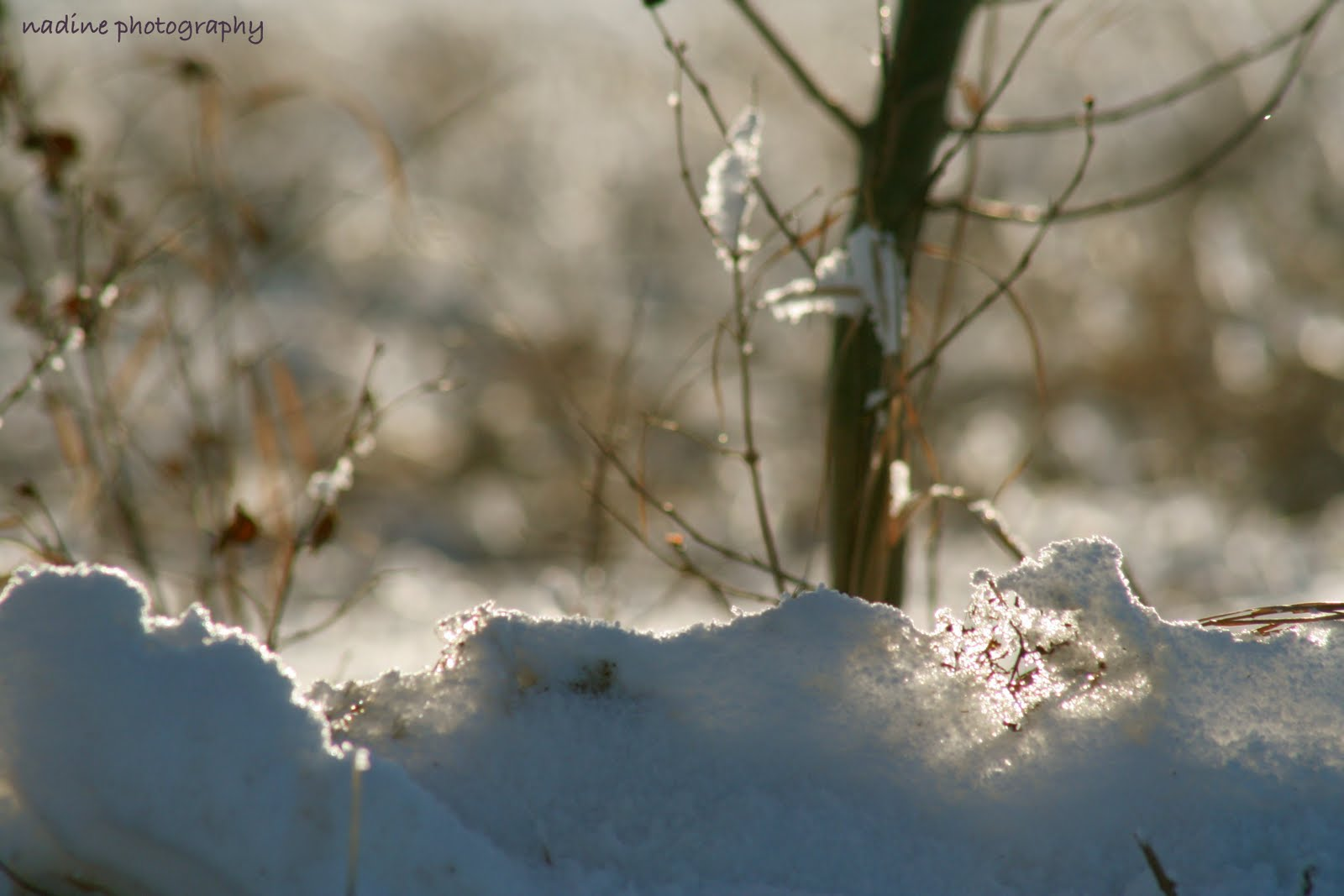 [snowground+[2]]