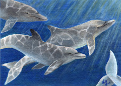 """Dolphin Delight"" ACEO -SOLD"