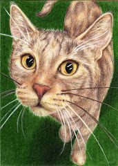 """Tortie Cat"" ACEO - SOLD"