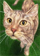 """Tortie Cat"" ACEO - SOLD"
