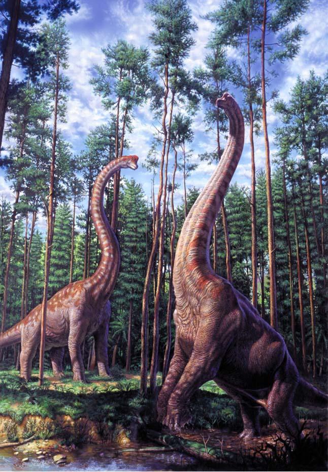 [Brachiosaurus-1.jpg]