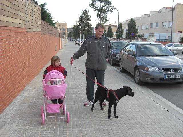 Adopción de Dina en diciembre 08!