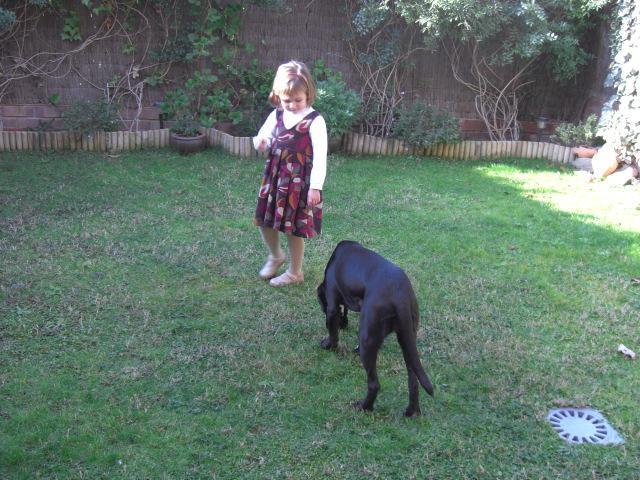 Dina jugando en su nuevo jardín!