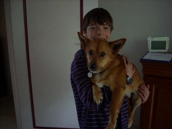 ROCKY, adoptado en el extranjero en marzo/09!