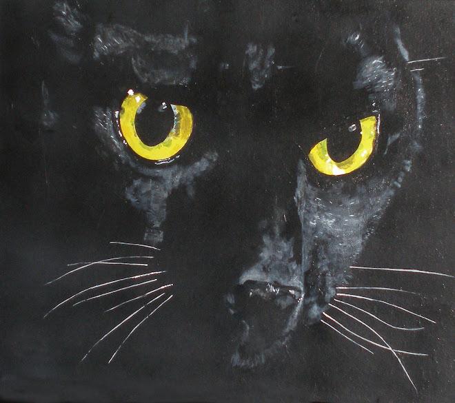 Black Kat Fever