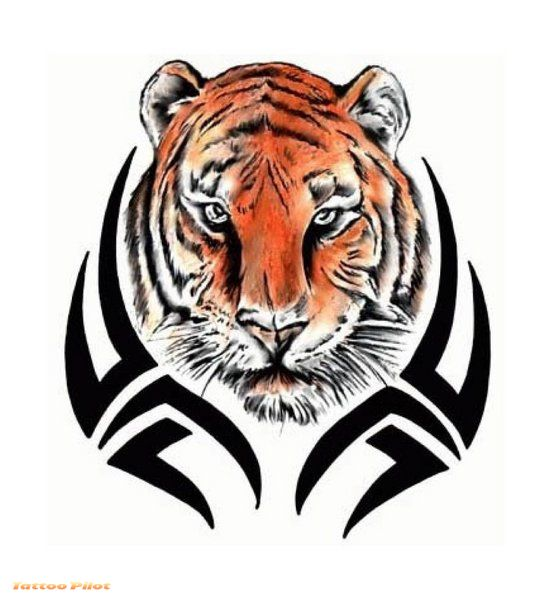 tiger tribal tattoo. tiger tribal tattoo.