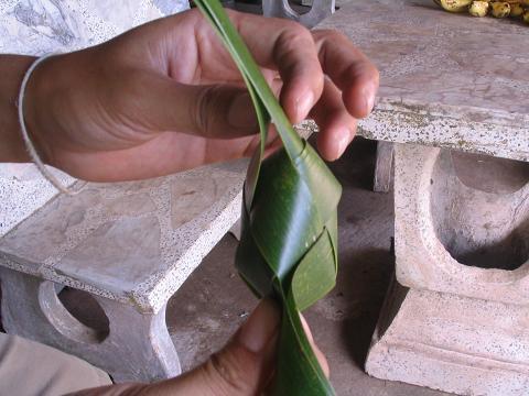 สอนวิธี สานนก สัตว์ ด้วยกระดาษ หลอดกาแฟ  ใบลาน ใบมะพร้าว,วิธีทำ พับ นก สัตว์   ทำนก สัตว์ด้วยกระดาษ หลอดกาแฟ how to weave fold bird from palm leaf coconut leaf leave drinking straw ,how to make diy bird from palm leaf coconut leaf leave drinking straw,how to weave bird animal ,woven bird from paper palm leaf coconut leaf leave palm leaf coconut leaf leave drinking straw ,woven paper palm leaf coconut leaf leave palm leaf coconut leaf leave drinking straw bird animal,how to weave,diy how to palm weaving   ヤシの葉ヤシの葉から織り倍鳥にストローを残す方法