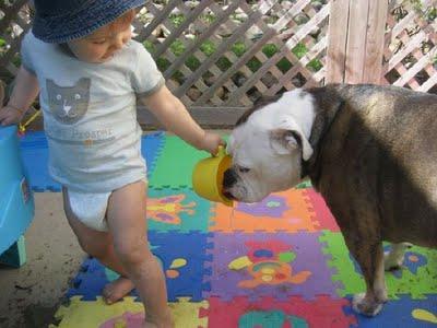 สัตว์น่ารัก,เด็กน่ารัก