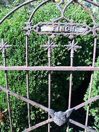Gate at Finch family cemetery