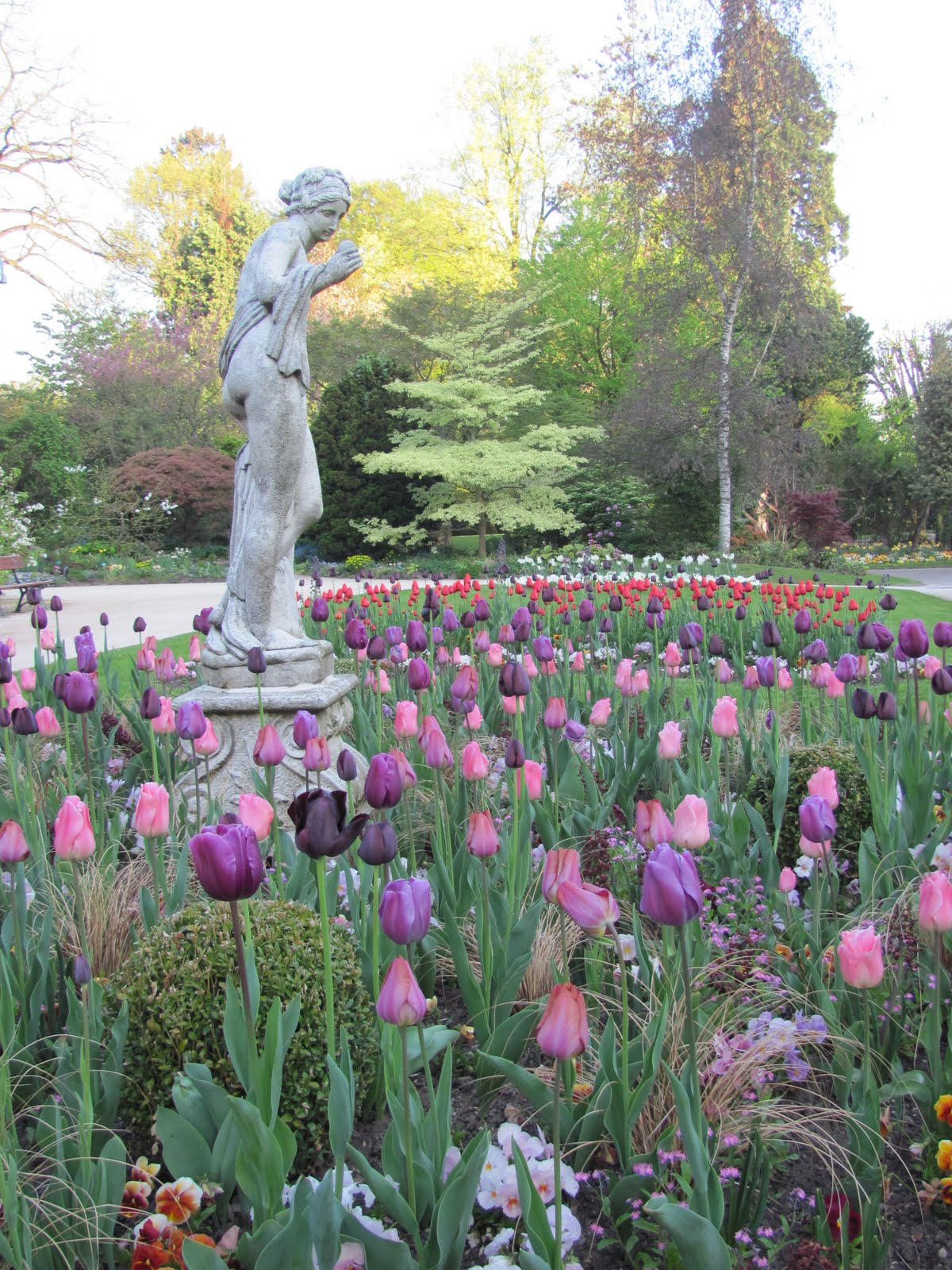 Les aventures d 39 une fille am ricaine en france springtime for Jardin botanique metz