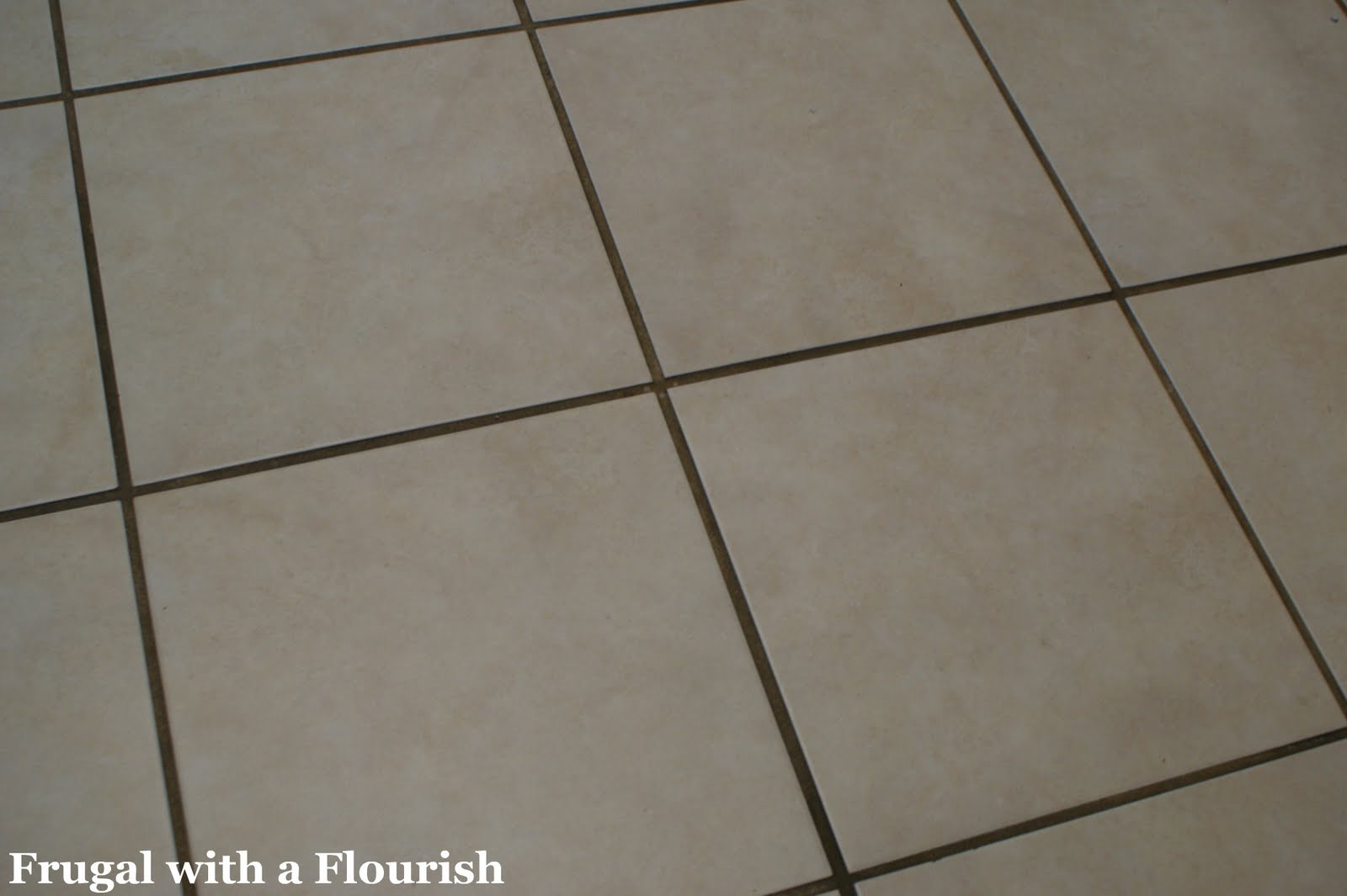 Frugal With A Flourish Getting Tile Grout Back To Beautiful And Clean - Cleaning grout off porcelain tile
