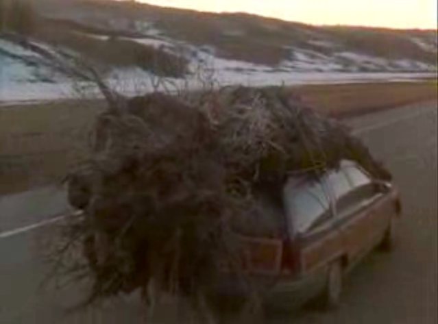 You ve all see  quot National Lampoon s Christmas Vacation  quot  That was us    National Lampoons Christmas Vacation Car