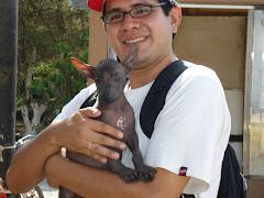 Perrito Chimoc