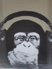 La escucha es nuestra ley
