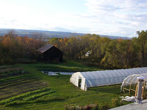 Small field and greenhouses