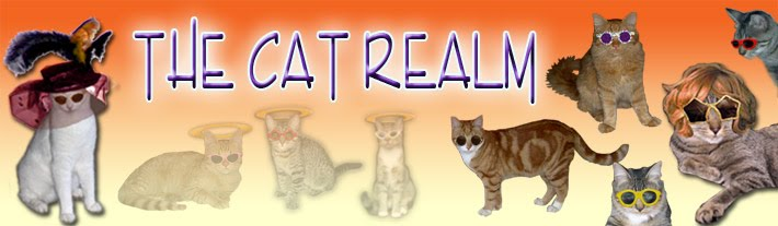 THE CAT REALM