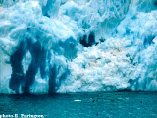 iceberg image