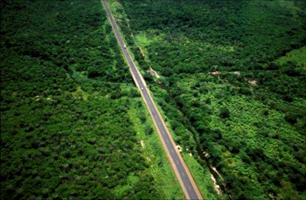 http://3.bp.blogspot.com/_uD3_wntxoaE/TJgoTfcT-sI/AAAAAAAAAqY/TdIs97gwxns/s1600/carretera-amazonas.png